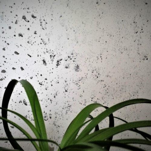 ktldecoration-Ambiance-mur